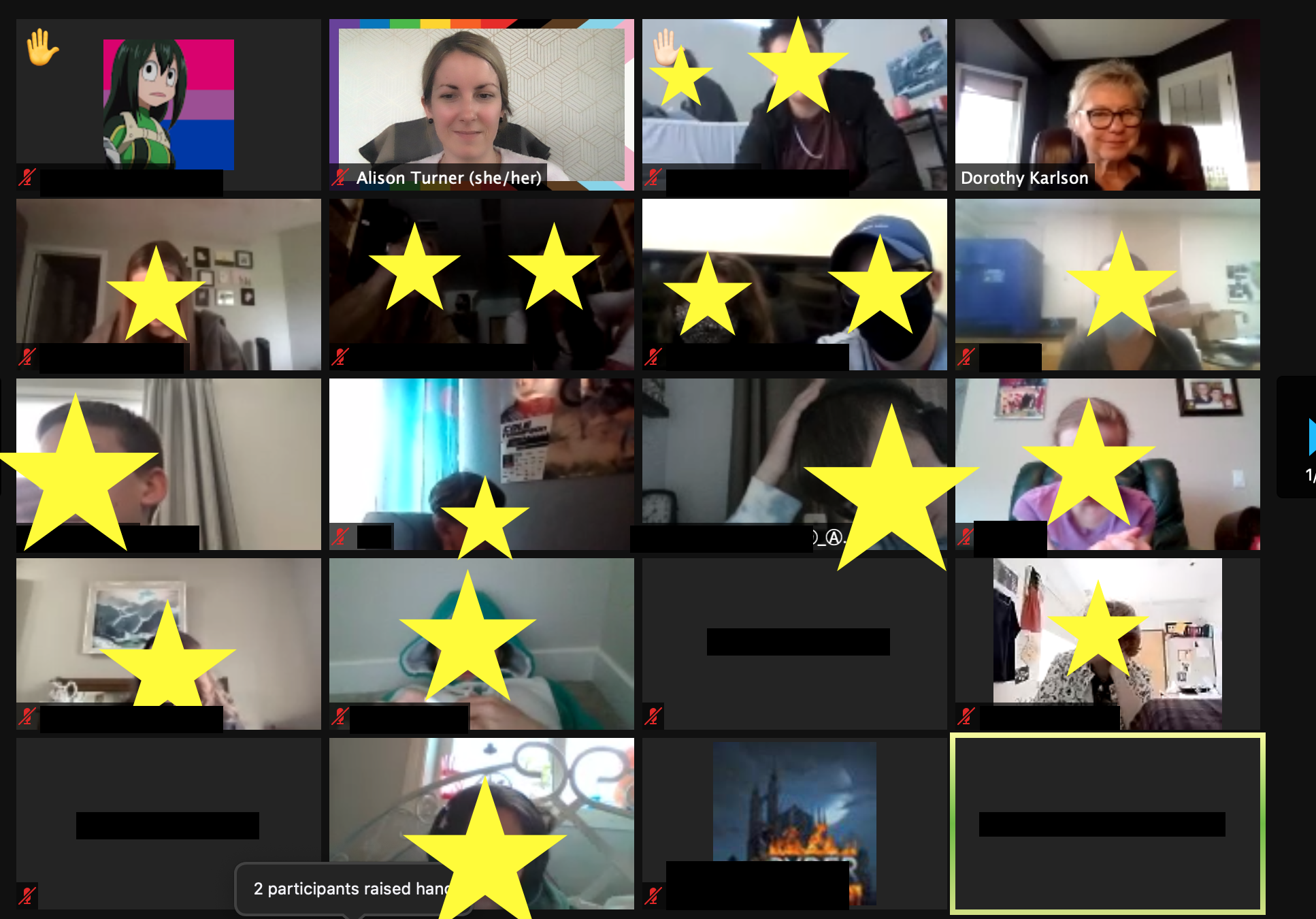 Image of zoom session showing learners and leaders together.